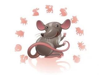Финансовый гороскоп Крысы на 2018 год